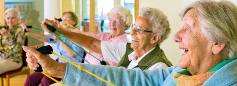 Actividades Para Personas Mayores Envejecimiento Saludable