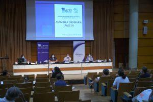97. 20200723 Asamblea Ordinaria LARES CV 300x200 - 25 años de compromiso y solidaridad