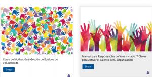 volun 1 300x152 - Opciones formativas Campus Lares - Voluntariado